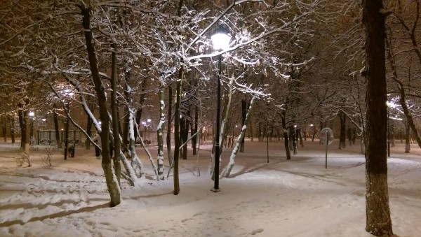 Парк Новые Черемушки, вечер